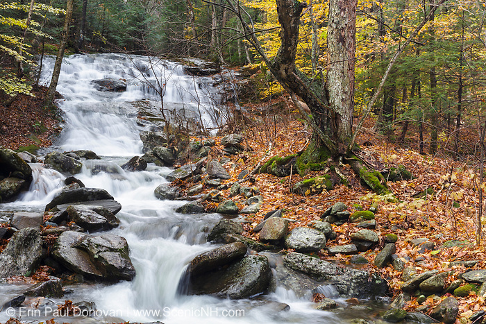 Stark Falls along Stark Falls Brook in Kinsman Notch of New Hampshire during the autumn months.