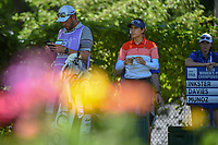 Azahara Munoz (ESP) looks over her tee shot on 13 during round 2 of the 2018 KPMG Women's PGA Championship, Kemper Lakes Golf Club, at Kildeer, Illinois, USA. 6/29/2018.<br /> Picture: Golffile | Ken Murray<br /> <br /> All photo usage must carry mandatory copyright credit (&copy; Golffile | Ken Murray)