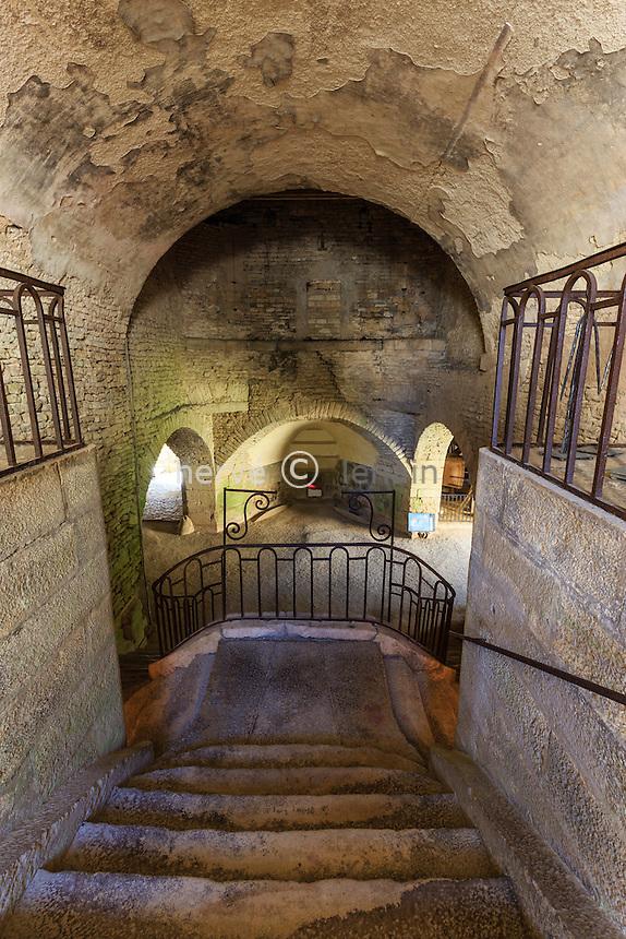 France, Yonne(89), Buffon, les forges de Buffon, escalier d'accès au haut-fourneau // France, Yonne, Buffon, Buffon forges, stairs to the blast furnace