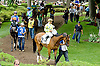Proud Pearl before The Go For Wand Stakes at Delaware Park on 6/11/12