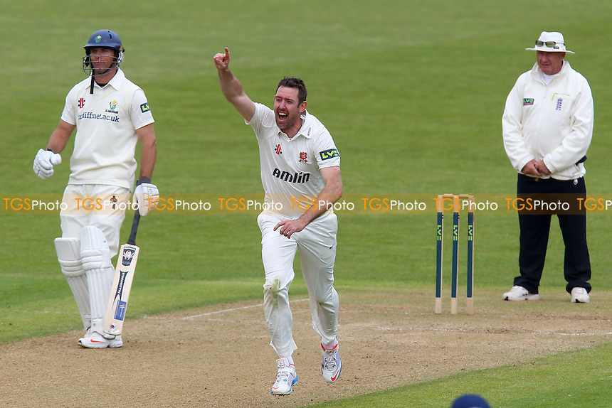 Delight for David Masters of Essex as he claims the wicket of Jim Allenby - Glamorgan CCC vs Essex CCC - LV County Championship Division Two Cricket at the Swalec Stadium, Cardiff, Wales - 17/05/13 - MANDATORY CREDIT: Gavin Ellis/TGSPHOTO - Self billing applies where appropriate - 0845 094 6026 - contact@tgsphoto.co.uk - NO UNPAID USE.