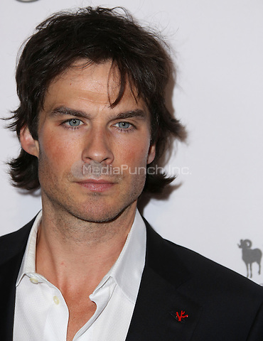 HOLLYWOOD, CA - MAY 07: Ian Somerhalder attends The Humane Society of the United States' to the Rescue Gala at Paramount Studios on May 7, 2016 in Hollywood, California. Credit: Parisa/MediaPunch.