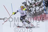2016 Section 5 Alpine Ski Meet PM Run