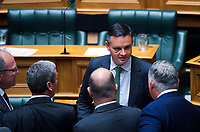 Green Party co-leader James Shaw talks to MPs. Members of the NZ Parliament pay tribute to Christchurch terror attack victims at Parliament in Wellington, New Zealand on Monday, 18 March 2019. Photo: Dave Lintott / lintottphoto.co.nz