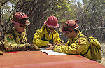 August 21, 2001 Coulterville, California  -- Creek Fire – CDF fire captains make plans before cutting fire breaks on Cuneo Road.  The Creek Fire burned 11,500 acres between Highway 49 and Priest-Coulterville Road a few miles north of Coulterville, California.