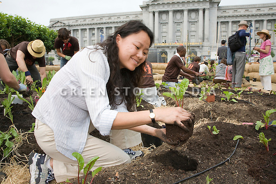 "Volunteer Charlene Lee of Millbrae plants during Community Planting Day (July 12, 2008) of the Slow Food Nation Victory Garden at San Francisco's Civic Center. The garden project ""demonstrates the potential of a truly local agriculture practice that unites and promotes Bay Area urban gardening organizations, while producing high quality food for those in need.""* The garden is planted on the same site as the post-World War II garden sixty years ago. The food will be grown over a period of two months, harvested, and donated to people in need..*slowfoodnation.org"