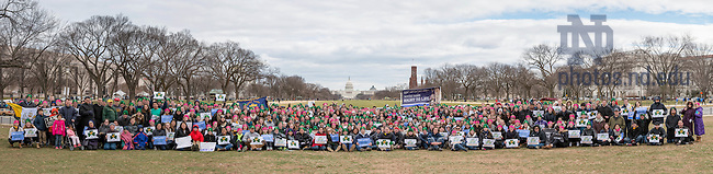January 27, 2017; Over 700 students, faculty, and staff from Notre Dame, Saint Mary's, and Holy Cross College pose for a photo with the Capitol in the background before marching at the National March for Life in Washington, D.C.  (Photo by Barbara Johnston/University of Notre Dame)
