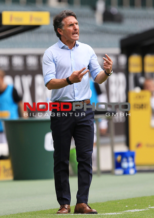 Berlins Trainer Bruno Labbadia -<br />