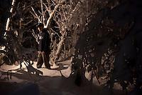 Vinny in birch forest.
