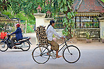 Transporting Wood By Bicycle