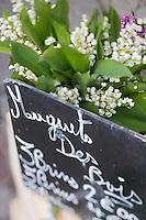 France, Calvados (14), Côte Fleurie, Trouville-sur-Mer,  Muguet sur un étal du marché/ France, Calvados, Côte Fleurie, Trouville sur Mer,  Lily of the valley on a market stall