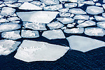 Broken up angular iceberg floe in the Weddell Sea, Weddell Sea, Antarctica