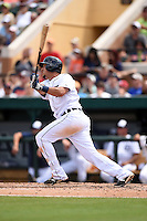 Detroit Tigers infielder Hernan Perez (26) during a Spring Training game against the Miami Marlins on March 25, 2015 at Joker Marchant Stadium in Lakeland, Florida.  Detroit defeated Miami 8-4.  (Mike Janes/Four Seam Images)