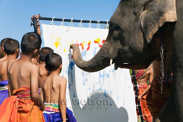 An elephant paints for a group of Suai children during the annual Surin Elephant Round-up - a celebration of the town's history and elephants.  Surin, Surin province, THAILAND.