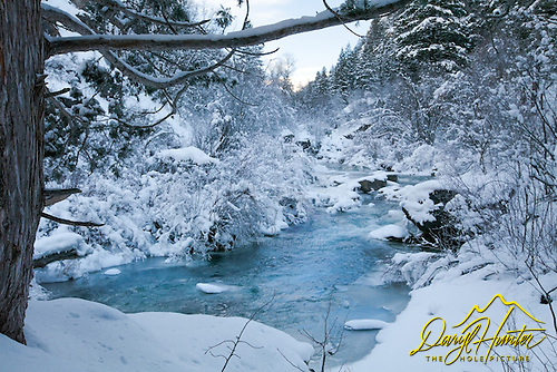 The blue of frozen creek bottom