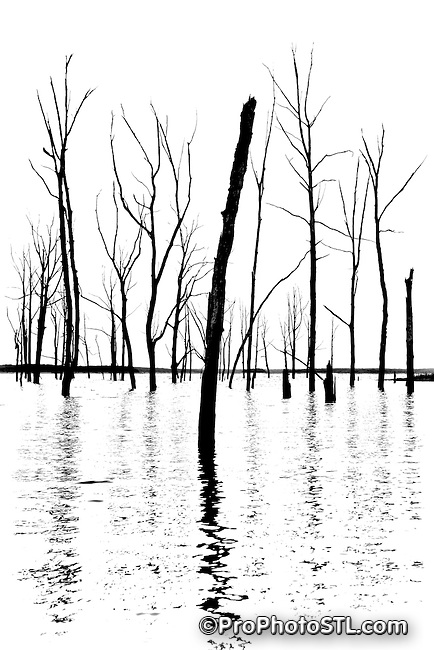 Mark Twain Lake in Missouri