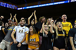 LOS ANGELES - MAY 5:  Long Beach State 49ers fans show their support during the game against the UCLA Bruins during the Division 1 Men's Volleyball Championship against the UCLA Bruins on May 5, 2018 at Pauley Pavilion in Los Angeles, California. The Long Beach State 49ers defeated the UCLA Bruins 3-2. (Photo by John W. McDonough/NCAA Photos via Getty Images)