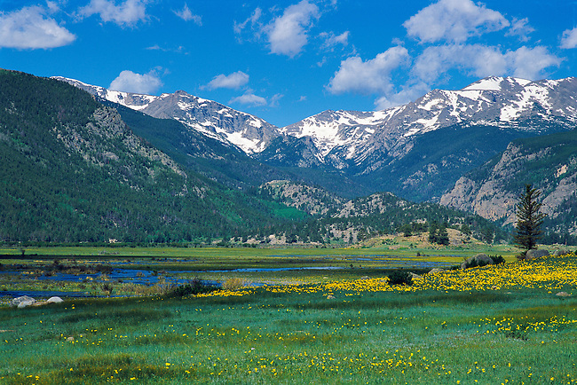 summer morning in Moraine Park, in Rocky Mountain National Park, Colorado, USA