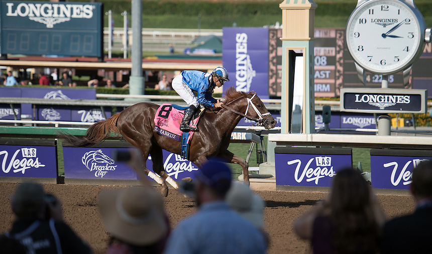 ARCADIA, CA - NOV 04: Tamarkuz #8, ridden by Mike Smith, wins the Breeders' Cup Las Vegas Dirt Mile at Santa Anita Park on November 4, 2016 in Arcadia, California. (Photo by Douglas DeFelice/Eclipse Sportswire/Breeders Cup)