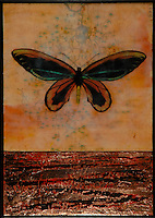 Mixed media encaustic painting with photo transfer with copper leaf of butterfly over antique map of china and orange red sea.
