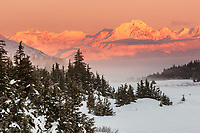 winter landscape shows alpenglow on the Chugach Mountains that jut above Turnagain Arm  and a meadow at Turnagain Pass area January 2014