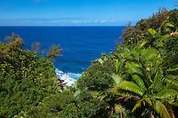 A small tropical gulch along the Hamakua Coast on the Big Island of Hawai'i.