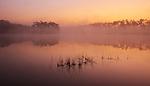 Long Pine Key, Everglades