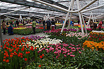 Keukenhof Gardens, Lisse, Netherlands