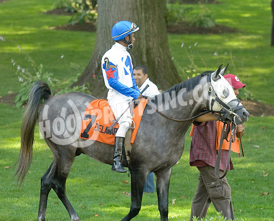 RB Brilliant before The Alec Courtelis Juvenile Arabian Stakes at Delaware Park on 7/9/12