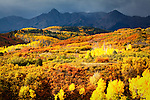 Fall color in front of Colorado mountain as a storm moves across the range.