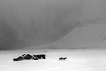 Snowstorm in west Iceland