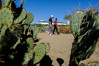 Adam Long (USA)and Adam Hadwin (CAN) on the 15th during the 2nd round of the Waste Management Phoenix Open, TPC Scottsdale, Scottsdale, Arisona, USA. 01/02/2019.<br /> Picture Fran Caffrey / Golffile.ie<br /> <br /> All photo usage must carry mandatory copyright credit (© Golffile | Fran Caffrey)