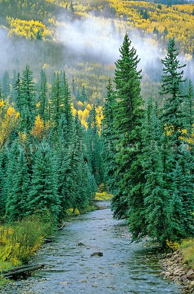 West Dolores River, San Juan National Forest near Dolores, Colorado, AGPix_0312.
