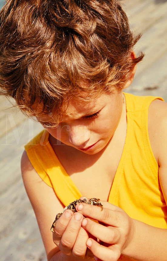 Young Boy playing with a crab on the beach. curiousity. animals, child, children. Hawaii.