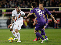 Calcio, Serie A: Fiorentina vs Roma. Firenze, stadio Artemio Franchi, 25 gennaio 2015.<br /> Calcio, Serie A: Fiorentina vs Roma. Firenze, stadio Artemio Franchi, 25 gennaio 2015.<br /> Roma's Radja Nainggolan, left, is challenged by Fiorentina's Jose' Basanta, left, and Nenad Tomovic, during the Italian Serie A football match between Fiorentina vs Roma at Florence's Artemio Franchi stadium, 25 January 2015.<br /> UPDATE IMAGES PRESS/Isabella Bonotto