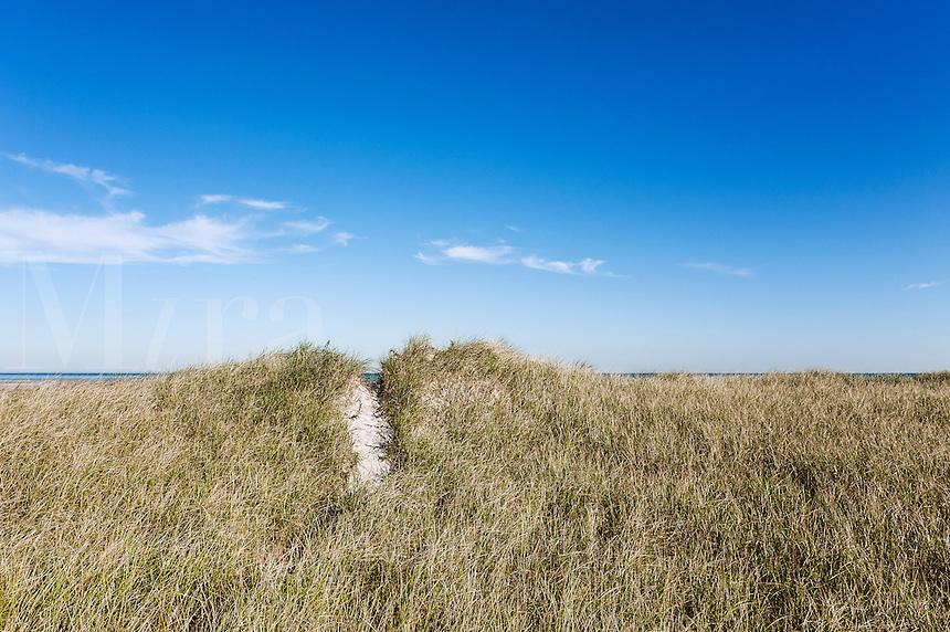 Dune path to Chapin Beach, Dennis, Cape Cod, Massachusetts, USA