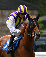 Zamalight ridden by Kieron Shoemark goes down to the start during Ladies Evening Racing at Salisbury Racecourse on 15th July 2017