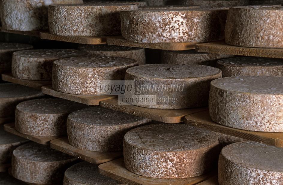Europe/Suisse/Engadine/Maloja: Fromagerie de la Bregaglia et Daniel Wuthrich - Les fromages