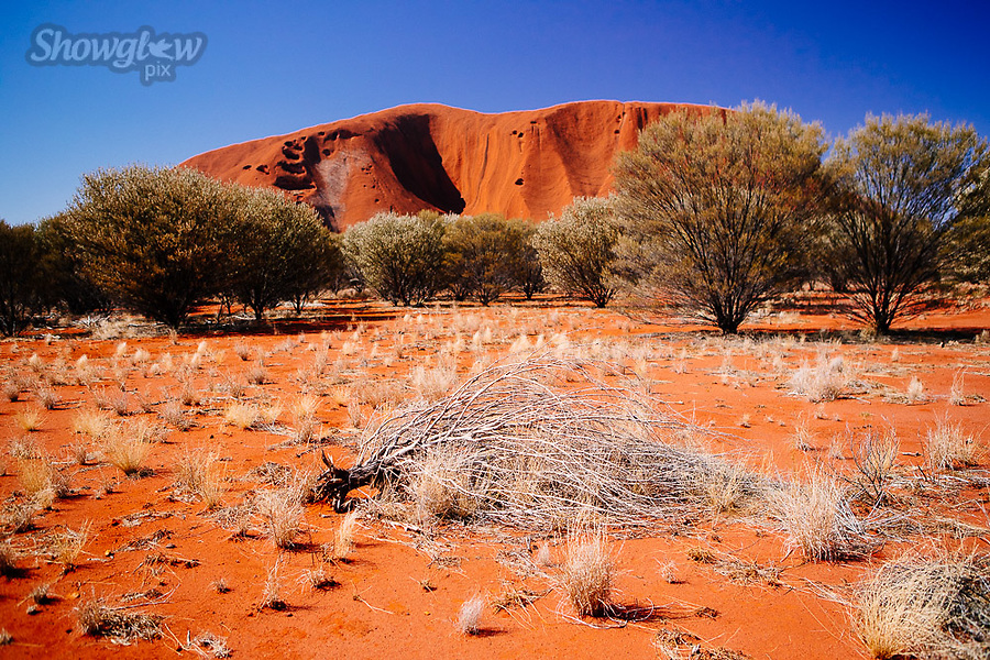 Image Ref: CA663<br /> Location: Uluru, Alice Springs<br /> Date of Shot: 13.09.18