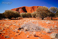 Image Ref: CA663<br />