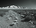 Desert Nevada Scenics Old Road B&W
