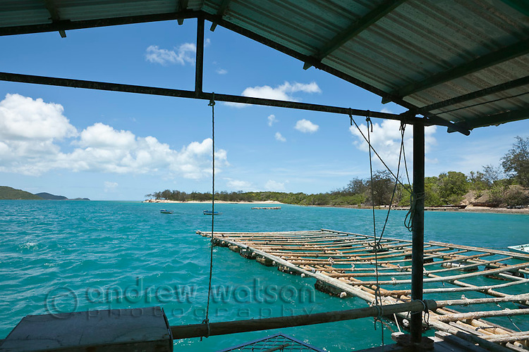 Pearl farming pontoon at Kazu Pearls.  The pearl farm is one of the last in the Torres Strait, growing and harvesting cultured pearls.  Friday Island, Torres Strait Islands, Queensland, Australia