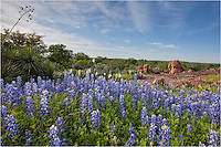 A small stream flows through this area near Llano, Texas. If the rains have been kind earlier in the spring, this location usually is ripe with bluebonnets and other wildflowers, including paintbrush and indian blankets. Some years are better than others but I nearly always return here each April.