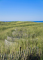 Dune fence helps protect from dune erosion