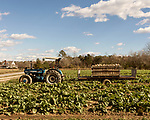 December 30, 2016. Rose Hill, North Carolina.<br />  <br /> John Dunn, age 19, is currently a freshman at NC State University and is the first person in his family to go to college. With a combination of grants, loans, help from his grandfather and weekend farm work, Dunn hopes to find finish college and find a career in agriculture.<br /> <br />  Colleges and universities, which are always trying to pinpoint an under-served and sometimes underprivileged populations of students, have noted a decline in students from rural areas of the country. There are various efforts underway in colleges and universities to identify more of these kids and get them enrolled.