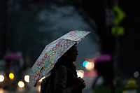 An Otterbein College student walks under an umbrella  in the rain between classes during a fall rain storm.