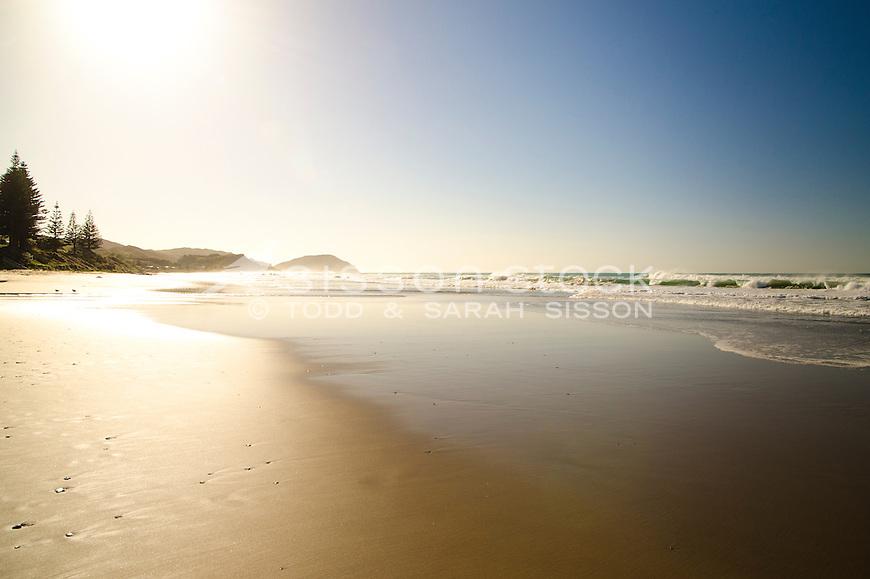 Pristine early morning, Wainui beach. Gisborne NZ