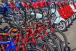 Bike rentals in Oak Bluffs, Marthas Vineyard, Massachusetts, USA