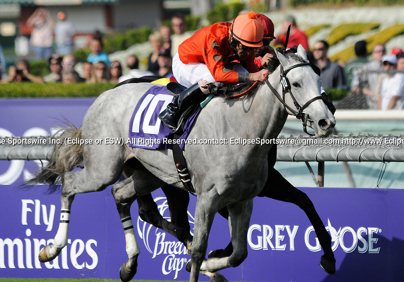 09 November 06: Tapitsfly (no. 10), ridden by Robby Albarado and trained by Dale Romans, wins the Breeders' Cup Juvenile Fillies Turf at Santa Anita Park in Arcadia, California.