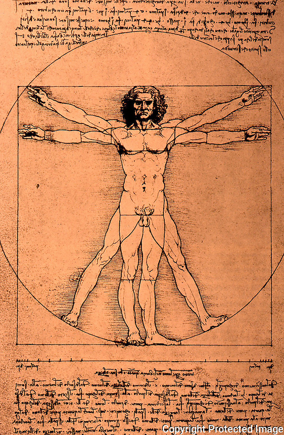 Visual Arts:  Leonardo Drawing--The Canon of Proportions.  Photo '84.